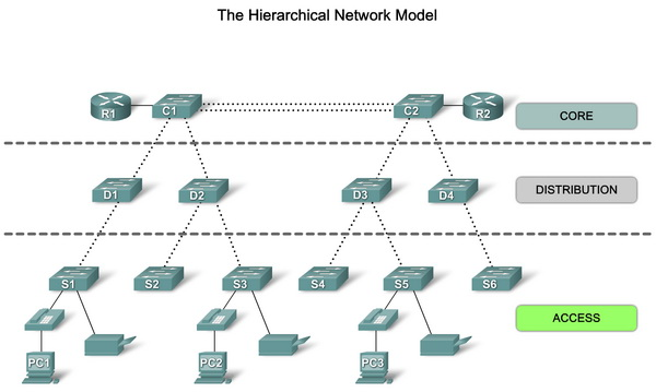The Hierarchy Network Model